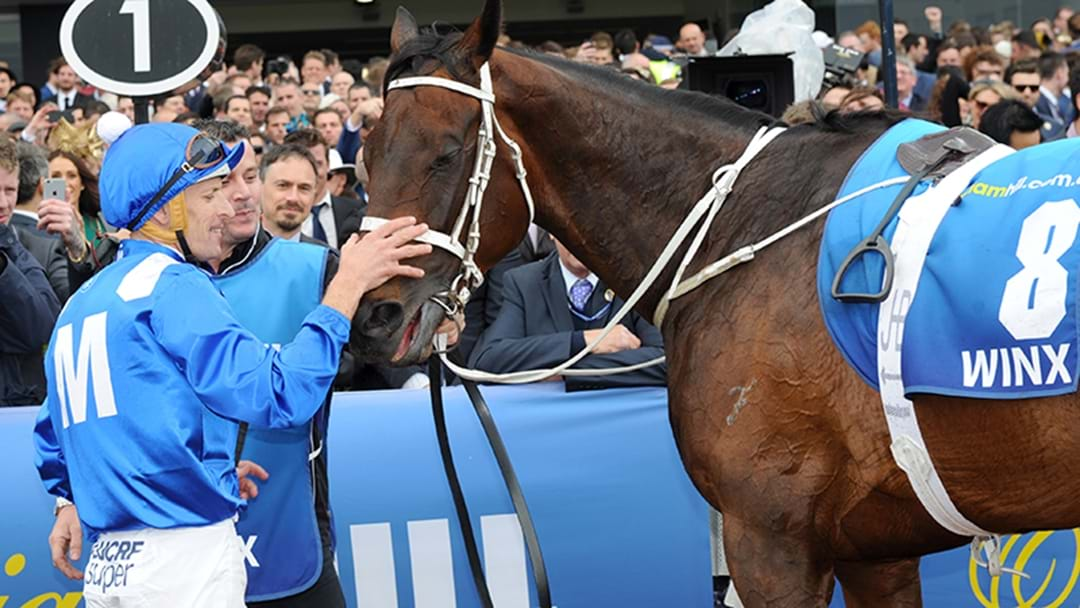 Winx's Return To Racing Postponed
