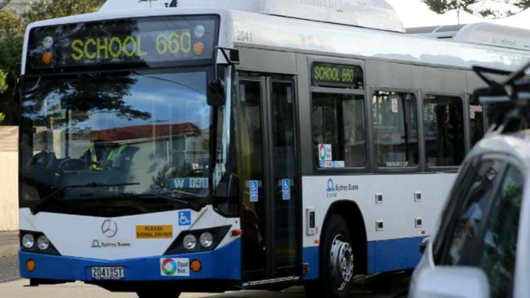 More Buses, Services For The Hunter